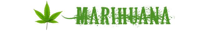 banner_marihuana