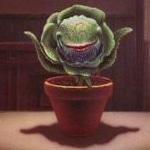 Die kleine Genrefibel Teil 16: Flora Mortale