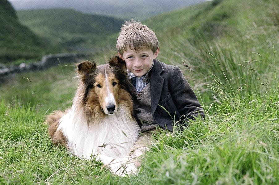 Lassie 2005